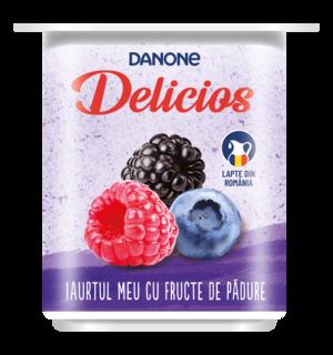 DANONE DELICIOS FRUCTE DE PADURE 125G